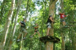 bali, treetop, adventure, park, bedugul, botanical garden, bali treetop, treetop adventure, tree top adventure park, bali treetop adventure park, bedugul botanical garden, net bridge
