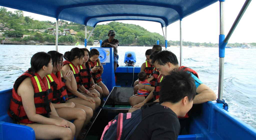 bali, glass bottom, boats, tours, tanjung benoa, turtle island, bali glass bottom, glass bottom boat, glass bottom boat tour, turtle island tour, underwater life