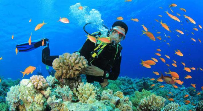 Bali Open Water Diving Course