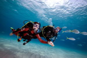 bali, diving, dive, course, bali diving, bali dive, bali diving course, PADI dive, padi dive course, open water, open water training