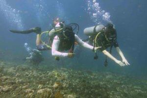 bali, scuba, dive, diving, course, bali diving, scuba diving, scuba diving course, bali scuba diving course, padi scuba diving, padi scuba diving course