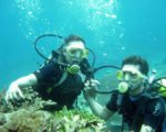 bali, referral, diving, courses,