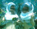 tour package 7 days bali, sea walker, sanur, bali sea walker, underwater, underwater tour, sanur underwater tour, great fishes