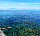 Togean National Park Underwater Panorama