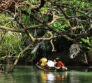 Unjung Kulon Exploration by Traditional Boat