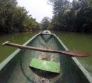 Explore Ujung Kulon National Park