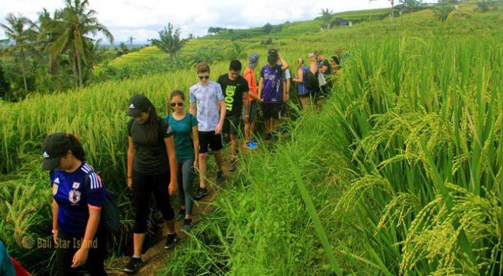 Bali Trekking Adventures
