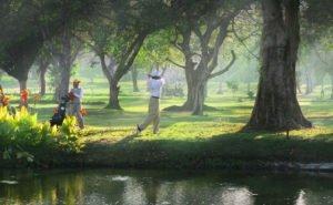 Short under tree, bali, sanur, golf, course, bali beach, bali beach golf, sanur golf, bali beach golf course, sanur golf course