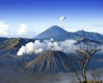 java tour packages, bromo mount, east java tour, tour packages