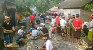 social organization system, bali, balinese, people, community system