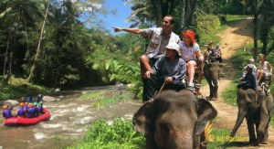 bali elephant rafting package, bali, rafting, elephant ride, elephant safari, packages, bali rafting, bali rafting package, rafting elephant ride, elephant ride packages, elephant safari packages