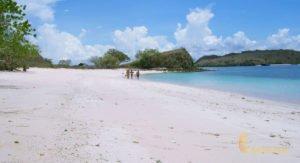 pink beach, komodo, pink beach komodo, komodo national park