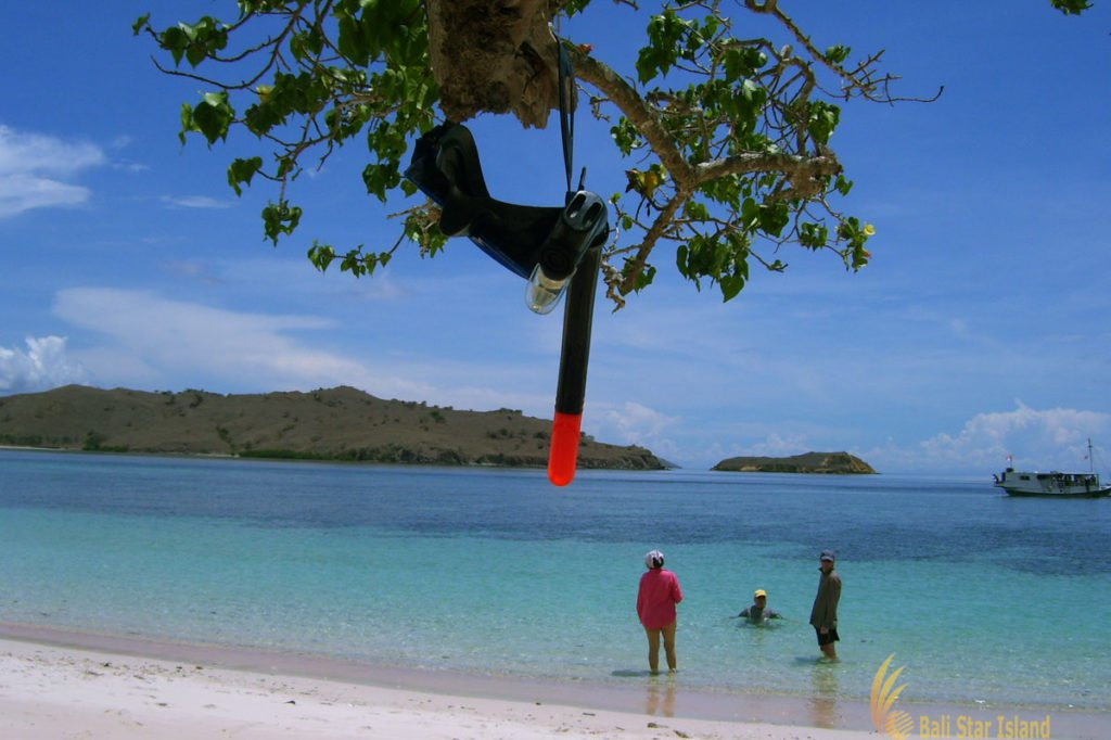 snorkeling, activities, pink beach, komodo, pink beach komodo, komodo national park