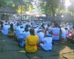 praying, bali, hindu, temples, ceremony, hindu temple, hindu temple ceremony, bali hindu temple ceremony