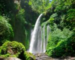 Sendang gile, explore bali and lombok tour package