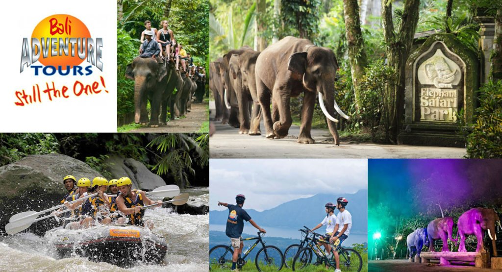 best bali adventure company exciting activities in Ubud