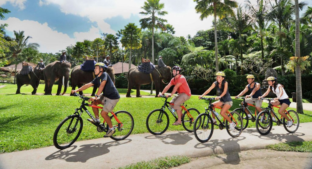 cycling, elephant safari, elephant safari, elephant safari package, bali cycling elephant safari package