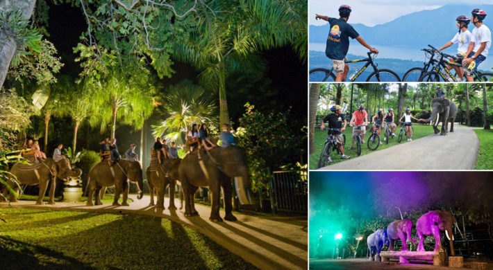 Bali Cycling Night Safari Package Itinerary – Bali Adventure Tours