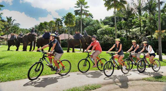 Mason Cycling Elephant Safari Package