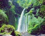 Bali Gili Lombok Komodo tour package