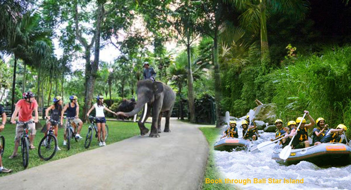 Bali Cycling Rafting Package Itinerary – Bali Adventure Tours