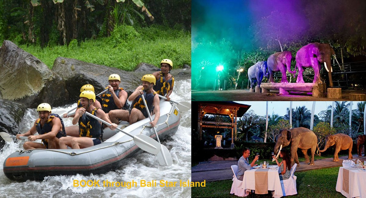 Bali Rafting Night Safari Package – Safari Under Stars – Bali Adventure Tours
