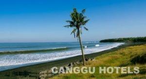 canggu hotels, canggu resorts, bali hotels, canggu bali hotels