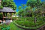 tropical garden kuta seaview, kuta seaview garden