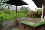 natura, natura resort,natura villa resort, natura villa resort ubud, natura plunge pool villa one bedroom