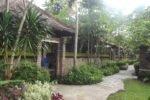 sanur hotel,peneeda view beach hotel,peneeda view pathway