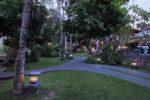 taman ayu cottage, taman ayu cottage seminyak, seminyak hotel, seminyak cottage, lush garden, taman ayu cottage lush garden