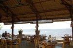 bali hotel, lovina hotel, adirama beach hotel, adirama beach hotel lovina, lovina restaurant, bali restaurant, adirama restaurant, adirama beach hotel restaurant