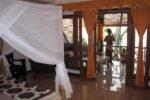 bali hotel, lovina hotel, adirama beach hotel, adirama beach hotel lovina, adirama beach hotel raja suite, raja suite