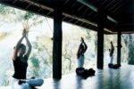 como shambhala.como shambhala estate,como shambhala estate ubud,como shambhala yoga