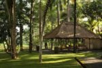 ubud village resort, ubud village resort and spa,the ubud village resort surrounding