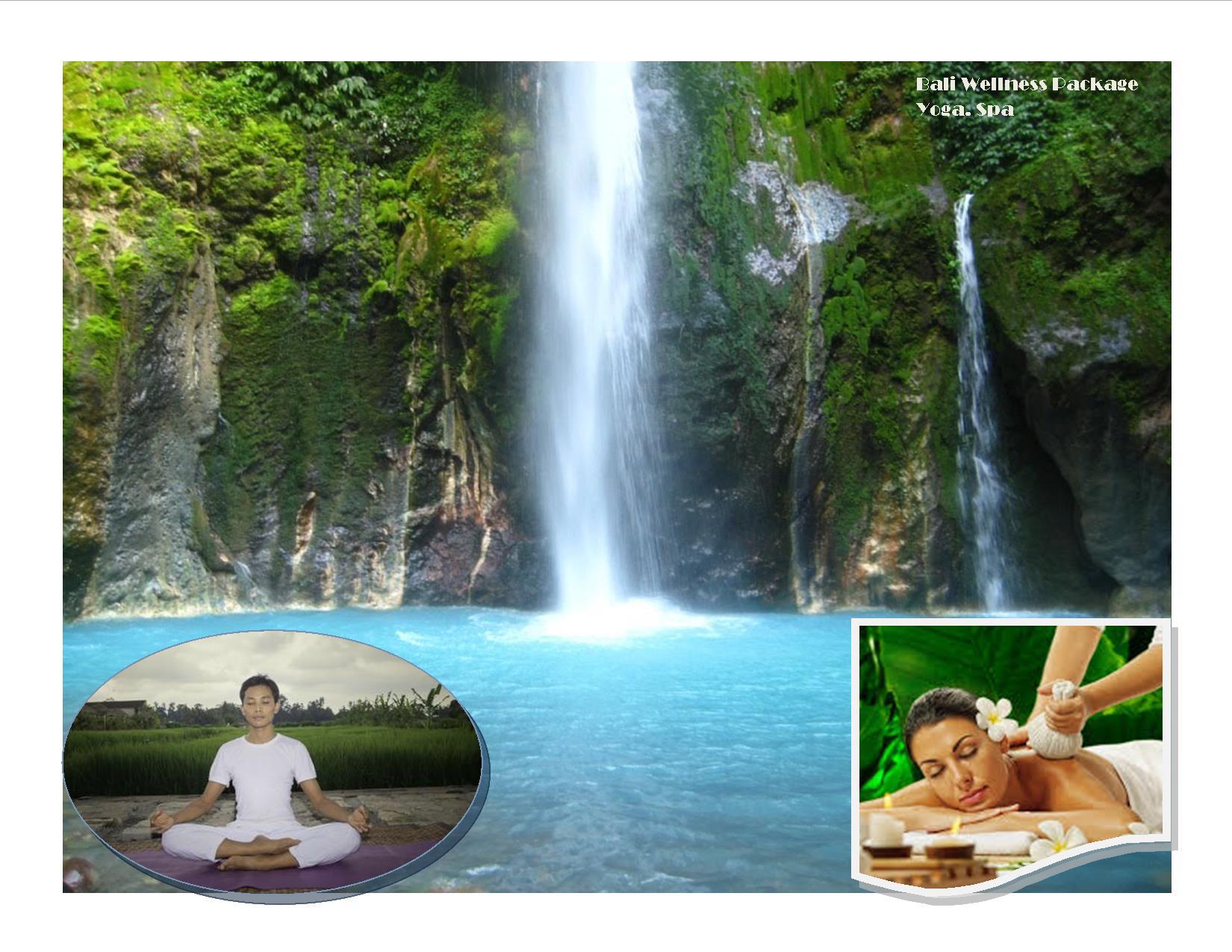 Bali Wellness Package 14 Days 13 Nights