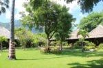 kinaara resort pemuteran, bali hotel, pemuteran hotel, kinaara resort pemuteran bali, kinaara resort pemuteran lush garden