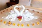 lv8 resort hotel,lv8 resort,lv8 resort hotel honeymoon