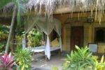 taman selini bungalows, pemuteran bungalow, bali bungalow, bali hotel, pemuteran hotel, taman selini bungalows accommodation