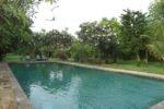 taman selini bungalows, pemuteran bungalow, bali bungalow, bali hotel, pemuteran hotel, taman selini bungalows outdoor pool