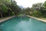 taman selini bungalows, pemuteran bungalow, bali bungalow, bali hotel, pemuteran hotel, taman selini bungalows swimming pool