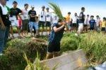 bali farm, bali farm activities, bali student, bali student tours