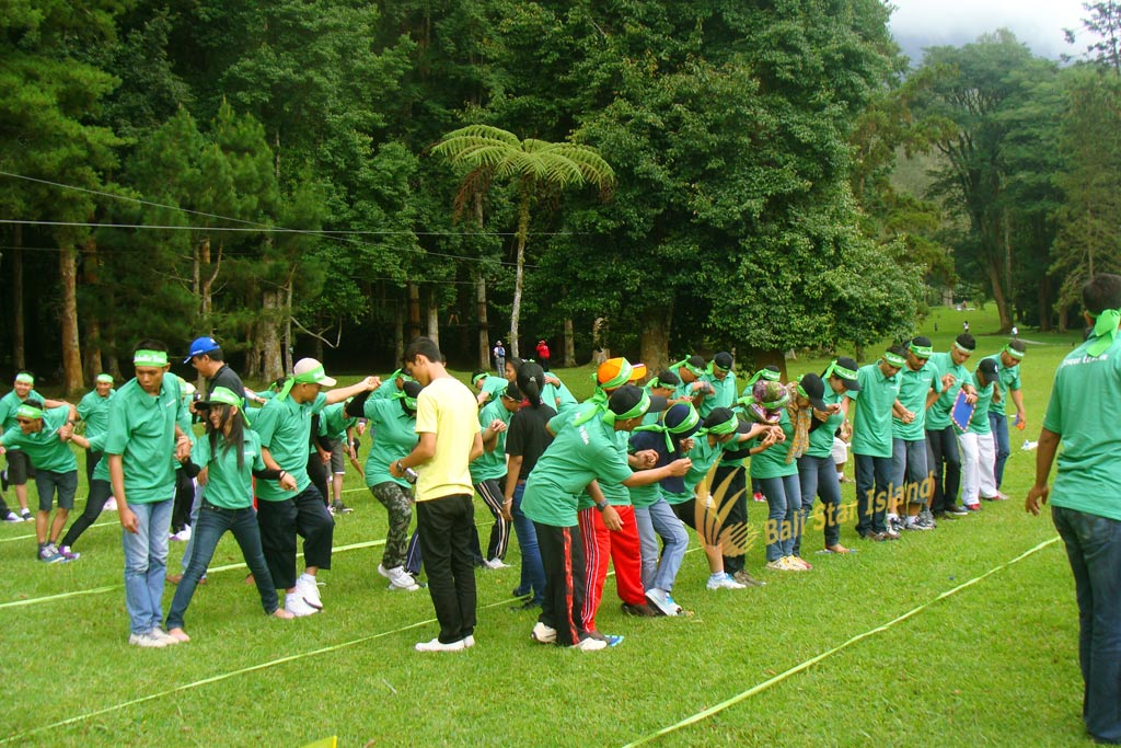 stepping mat, stepping mat game, garden team building, bali garden team building
