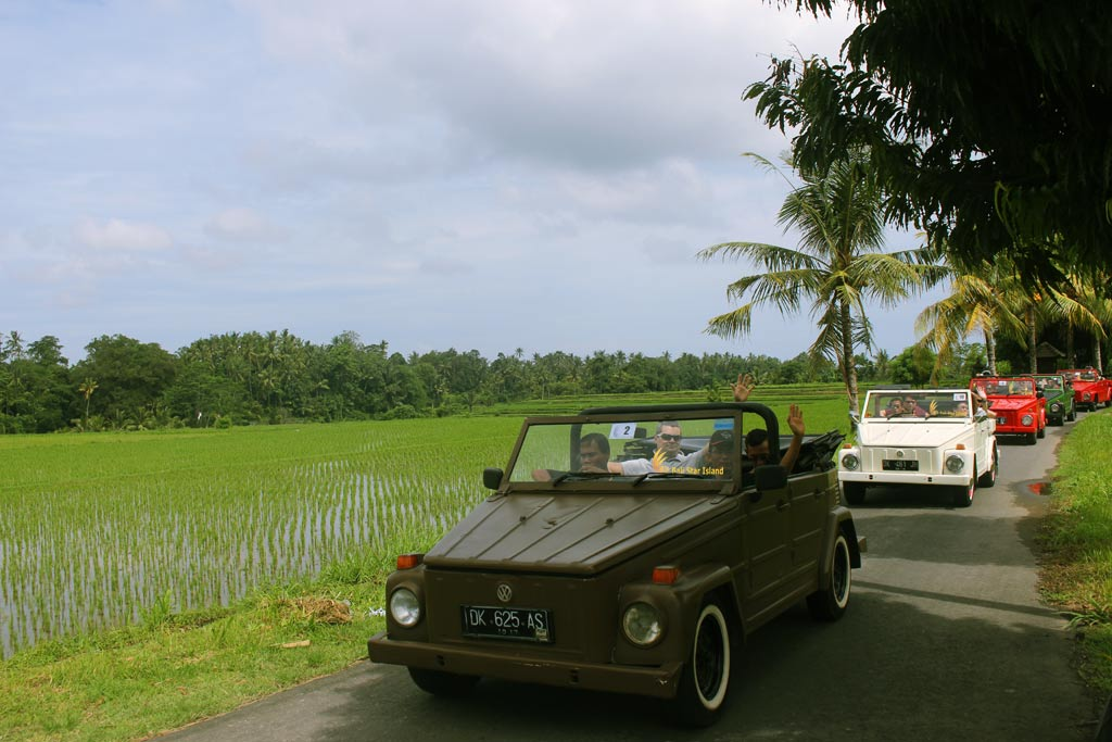 vw safari treasure hunt, vw safari, vw safari rice field, bali team building