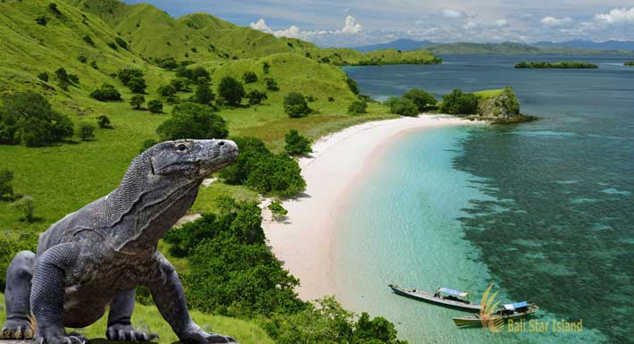 Komodo Tour Package 2D1N (Stay on Boat)