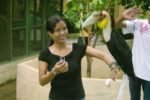 Aryaningsih Bali Star Island Staff – Visit Bali Zoo