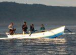 Lovina Dolphin Trip – 8th Bali Star Island Anniversary