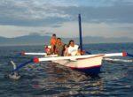 Lovina Dolphin Tour Morning – 8th Bali Star Island Anniversary