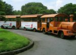Prambanan Smal Train Transportation – Borobudur Tour