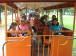 Mini Train Prambanan Temple – Borobudur Tour Experience